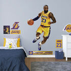 2016 Fathead Elite NBA Wall Decals 8