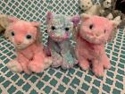 TY Beanie Babies: CARNATION, FLEUR, & JAZ the COLORFUL CATS MWMT!