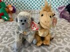 Ty Beanie Babies Of The Month Exclusives: VIRUNGA the Ape & KHUFU the Camel MWMT