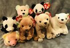 Ty Beanie Baby Bears-Including B.B. Bear-7 In All. Collectibles! Tag Errors!