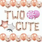 Two Cute Birthday Decorations 2nd For Girl Boy Banner Balloons Year Old Party