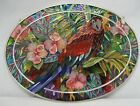 Amia Parrot Hand Painted Glass Sun Catcher 9 Wide 6219