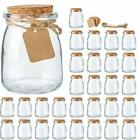30 Mini Glass Jars 7 oz For spices with Cork Lids with Label Tags and String