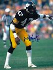 Pittsburgh Steelers Collecting and Fan Guide 83