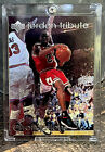 Top Michael Jordan Game-Used Cards for All Budgets 24