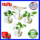 Kingbuy Wall Hanging Glass Planters Plant Terrarium for Home Decor 4 Pack