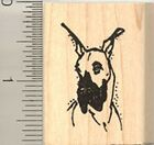 Great Dane Portrait dog Rubber Stamp Wood Mounted C8306