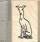 Whippet dog Rubber Stamp Wood Mounted D8314