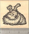 English Angora Rabbit Rubber Stamp Detailed Longhaired Bunny Stamper L6107 WM