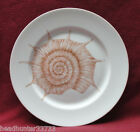 FITZ & FLOYD CHINA - COQUILLE (shell) Pattern - DINNER PLATE (A)