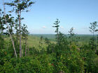50 DOWN 240 MONTH 20+ ACRES MISSOURI OZARKS LAND HUNTING OR RECREATION
