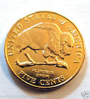 Gold Buffalo US Gold Nickel Coin 5 Cents North American Wild West Animal Cowboy