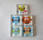 Cute and Silly Owls Square Glass Magnets Set of 5