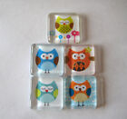 Lots of Very Cute and Silly Owls Square Glass Magnets Set of 5