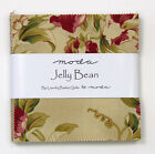 Moda Jelly Bean Prints Laundry Basket Charm Pack Quilt Fabric 42 squares  5