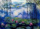 Claude Monet Nympheas, Water Lilies and Willow Repro II, Oil Painting 36x48in