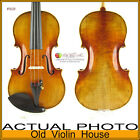 Good Violin in Ernst Heinrich Roth style, by Frank Lee #5628