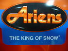 Ariens Snow Blowers Thrower Worm Shaft & Gear 52100900 Includes Bushing 05500007