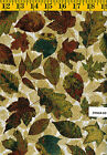 Stonehenge Wilderness 39160 68 Quilt fabric Cotton by Northcott Brown Leaves