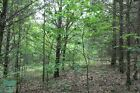 176 MONTH TO OWN 5+ ACRES OF MISSOURI OZARK LAND FOR SALE EASY TERMS