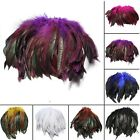 100Pcs Fluffy Beautiful Rooster Feather Fringe Decoration Home Craft DIY 6 8