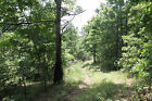165 PER MONTH TO OWN 5+ ACRES LAND IN THE OZARKS OF MISSOURI EASY TERMS