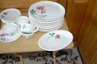 Burmuda Rose 'Round The Clock Canonsburg Pottery Dinner Plates Cups Saucers 25pc
