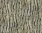 Natures Glory Wilderness collection cotton quilt fabric BTY Birch Tree Bark
