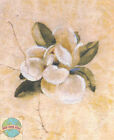Cross Stitch Kit ~ Cheri Blum White Magnolia Flower On Cracked Linen #51347