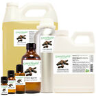 Clove Bud Essential Oil 100% Pure Free Shipping