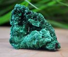 16 Gram Fibrous Forest Green Malachite Crystals From Katanga, Congo 1240.16