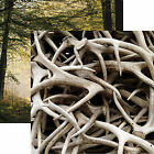 Reminisce ANTLERS 12x12 Dbl Sided 2pc Scrapbooking Paper HUNTING