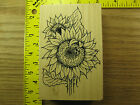 Rubber Stamp Sunflower Ladybug Stampendous Flower Nature Stampinsisters 4032