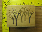 Rubber Stamp Winter Woods All Night Media Bare Trees Stampinsisters 2213
