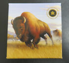 2013 Canada 10000 Fine Silver Coin Bison Stampede in mint packaging