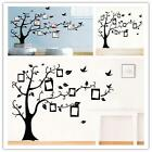 DIY Family Tree Photo Frame Quotes Wall Sticker Decal Art Living Room Home Decor