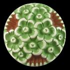 Vintage Painted  Buffed Button Plastic or Celluloid Green Flower Blooms
