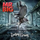 Mr Big-Defying Gravity -Box Set- -Box-  (UK IMPORT)  CD NEW