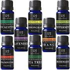 Radha Beauty Aromatherapy Top 8 Essential Oils 100% Pure & Therapeutic