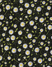 You are my Sunshine cotton Quilt fabric Timeless Treasures Daisies on Black