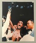 3623835283294040 1 Boxing Photos Signed