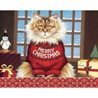 Squeaky's Christmas 5.375 In X 6.875 In Boxed Christma, Christmas Cards by Lang