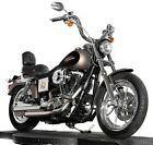 2004 Harley-Davidson Dyna  2004 Harley Davidson Dyna Lowrider Low Rider FXDLI Two-Tone Gold