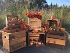 Historical Styled Cedar Wooden Crate created by AEIWG Co. - Medium Size