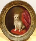 19th Century French School Portrait Of A White Terrier Dog Antique Oil Painting