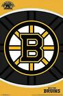 Boston Bruins Collecting and Fan Guide 13