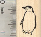 Chinstrap Penguin Rubber Stamp Small AA25115 WM