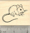 Mouse Rubber Stamp H23212 WM