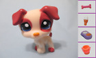 Littlest Pet Shop Dog Jack Russell 1200 and Free Accessory Authentic Lps