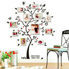 Family Tree Photo Frame Wall Sticker Living Room Home Vinyl Decal Decoration US